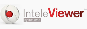 logo_inteleconnect
